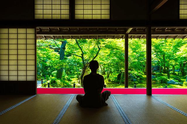 和のこころ~忘れてはいけない日本文化の美学~
