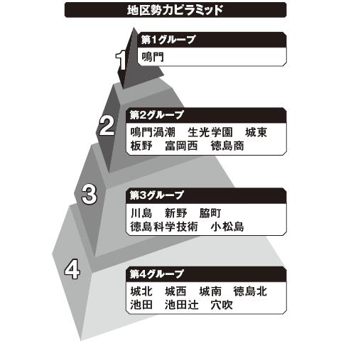 徳島 勢力ピラミッド